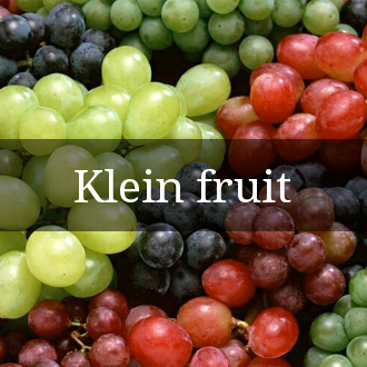 Klein fruit